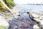 HC orders to shut 231 factories to stop Buriganga pollution