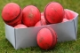 Whopping 48 sixes, 70 fours in Bangladesh cricket run-fest