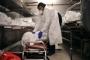 US has nearly 92,000 deaths from coronavirus